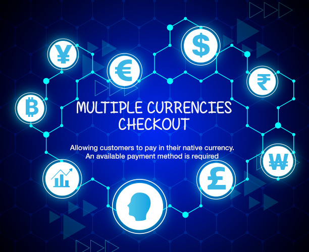 WooCommerce Multi Currency - Currency Switcher - 6